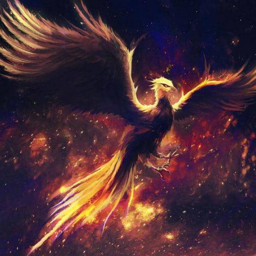 phoenix, burning bird, cosmos, night, fire, bird of night and fire, night, nightsky, stars, digital painting,